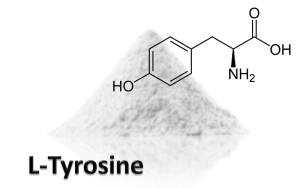 l-tyrosine review